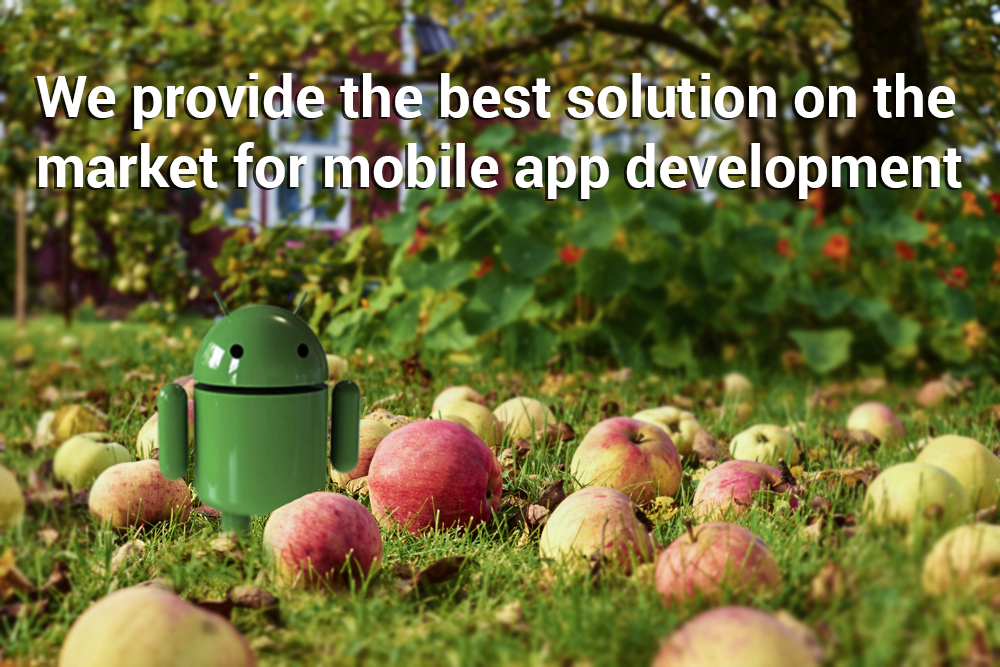 Get Mobile App Developed To Promote Your Business.